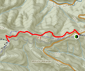 Newfound Gap to Indian Gap Map