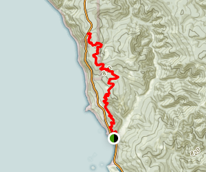 Coastal Trail: Demartin Section Map