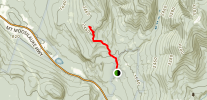 Blueberry Mountain Trail Map