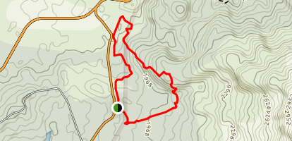 Arena 1968 Volcano Trail Map