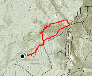 CCC Road to Laura Cowles Trail Loop Map