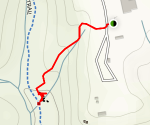 Audrey Stanley Grove Trail Map