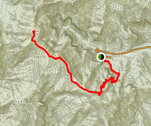 Charleston Peak South Trail Map