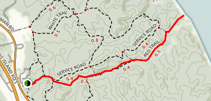 Calvert Cliffs Red Trail to Service Road Map