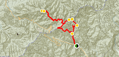 Kephart Prong Trail - Charlies Bunion - Mount LeConte  Map