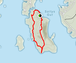 Stonedam Island Long Loop Trail Map
