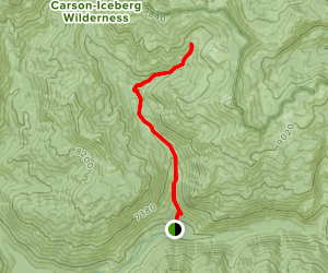 Disaster Creek Trail: Iceberg Meadow to Paradise Valley Map