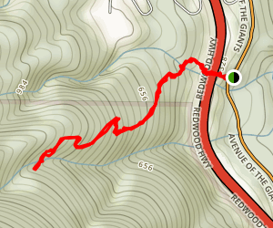 Allens Trail Map