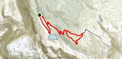 Edith Cavell Meadows Trail Map