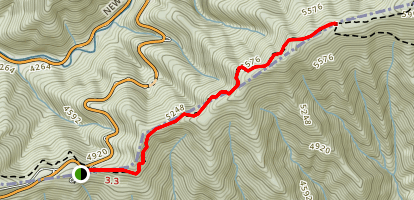 Appalachian Trail: Newfound Gap to Sweat Heifer Creek Trail Map