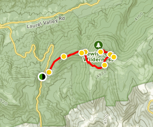 Mount Rogers via Appalachian Trail Map