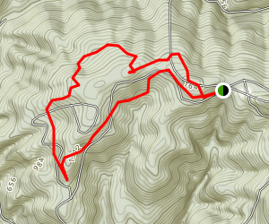 The Bombsite Trail #1118 Map