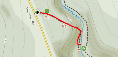 Bingham Falls Trail Map