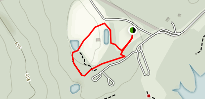 Mashburn Family Discovery Trail Map