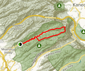 Moanalua Valley and Tripler Ridge Trail Loop Map