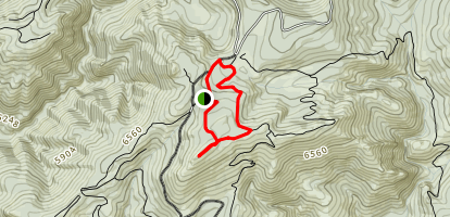 Little Bald Mountain Trail Map