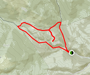 Rosalie and Tanglewood Trail Loop Map