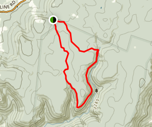 Breathed Mountain Trail to Big Stonecoal Trail Loop Map