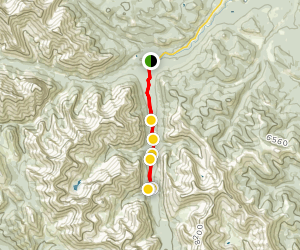 Junction Creek to Junction Falls Map