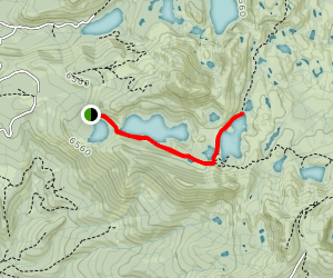 Feely Lake and Island Lake Map