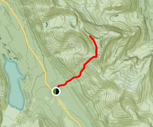 Observation Peak Map