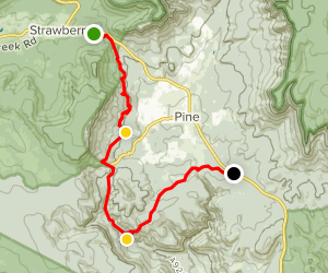 Pine Strawberry Trail Map
