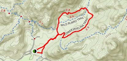 Lower Javelina and Wild Burro Loop Trail Map