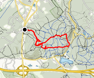 North Skyline Trail to Skyline Trail South Loop via Coon Hollow Path Map