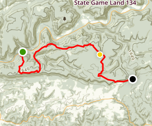 Loyalsock Trail: PA 87 to Genessee Trail Map