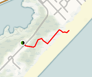 Cape May Dune Trail Map