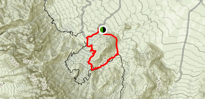 Indian Hollow Pine Tree Loop Trail Map