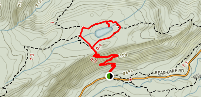 Bierstadt Lake Loop Trail Map