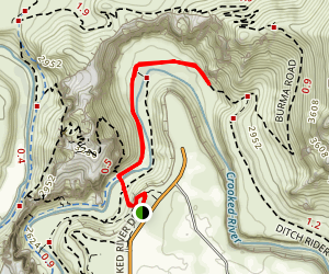 Wolf Tree Trail Map