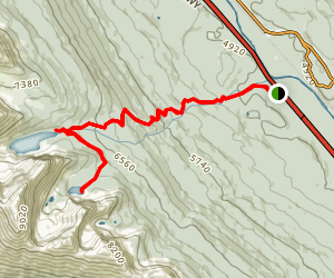 Taylor and O'Brien Lakes Map