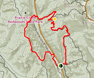 West Ridge and Rhododendron Trails Loop Map