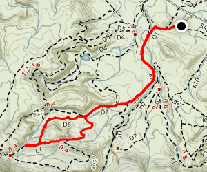 D1 and D6 Trail Loop Map