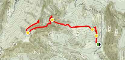 Bachelor Mountain via Bugaboo Ridge Map