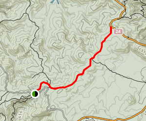 Cutty Grass Track Map