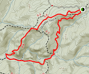 Quarry Trail to McKenzie Track and Piha Valley Track Map