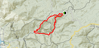 Quarry Trail to McKenzie Track and Piha Valley Track [CLOSED] Map