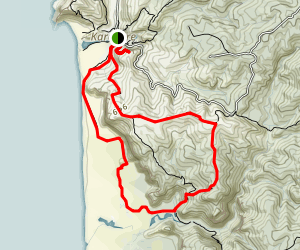 Karekare Beach and Zion Hill Ridge Loop Map