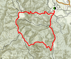 Mount Wittenberg, Sky, Old Pine and Bear Valley Trail Loop Map