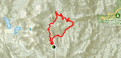 Nelsons Camp Loop Map