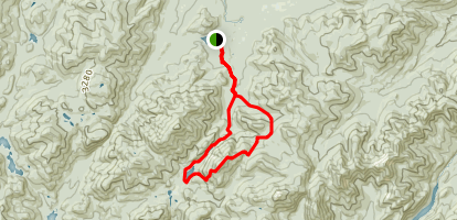 Indian Falls to Lake Colden and Avalanche Lake Loop via Van Hoevenberg Trail Map