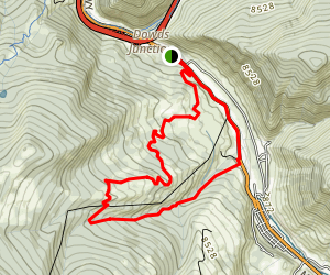 Meadow Mountain, Line Shack, and Grouse Creek Loop Map