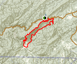 Beargap Trail to Appalachian Trail to Virginia Creeper Loop Map