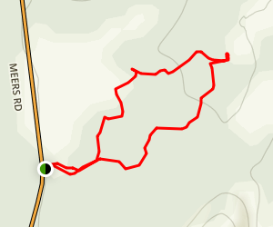 Parallel Forest (Cedar Planting) Trail Map