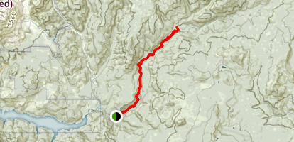 Lewis River Trail Map