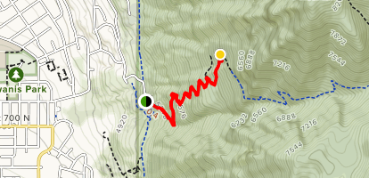 Top of the Y Map