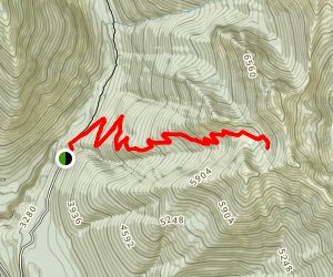 Carne Mountain Basin Map